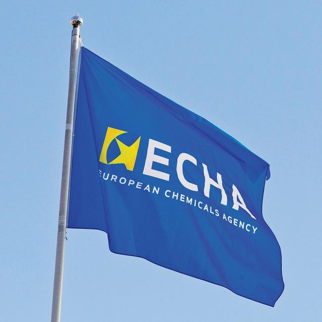 echa_European Chemicals Industry_flag on roof_650